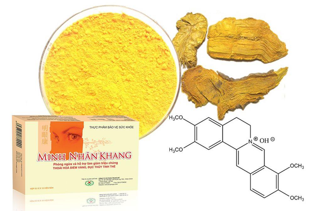 Palmatin – hoạt chất kháng sinh tự nhiên từ thảo dược Hoàng đằng